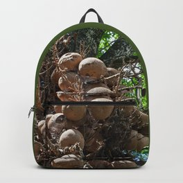 Cannonball Tree Fruit Backpack