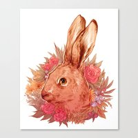 hare Canvas Prints featuring Hare by batcii