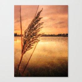 Memories Of Fall Canvas Print