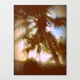 Sun Glare Palms Canvas Print