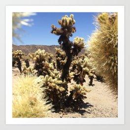 Joshua Tree Cholla Cactus Window #1 Art Print