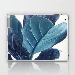 Fiddle Leaf Fig Plant, Blue Minimalist Nature Photography Laptop & iPad Skin