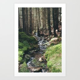 Mini - Stream Art Print