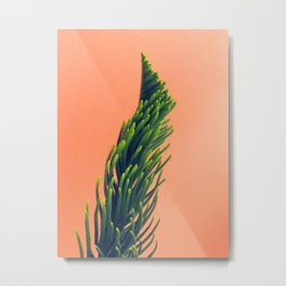 Complementary Colors Green Salmon Pink Against Background Metal Print