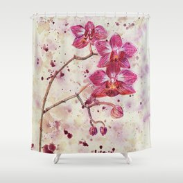 beauTEAful blooms: Orchids Shower Curtain