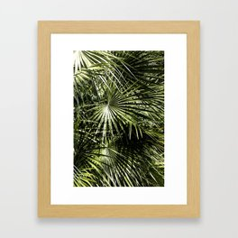Between The Light Framed Art Print