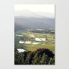 Hawaii Field Canvas Print