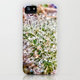 Skywalker OG Kush Strain Frosty Buds Calyxes Trichomes Close Up View iPhone Case