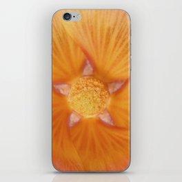 Pretty Holly iPhone Skin
