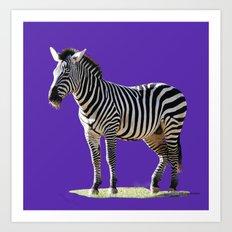 Designer Zebra Art Print
