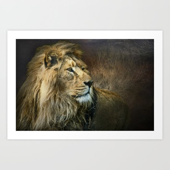 Serengeti Lion Art Print