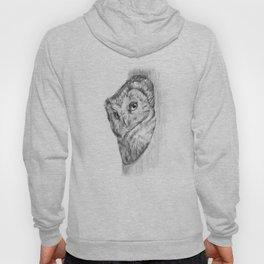The Boreal Owl Hoody