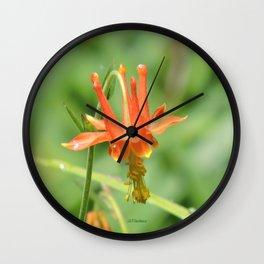 Columbine in the Breeze Wall Clock