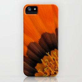 Orange Gazania iPhone Case