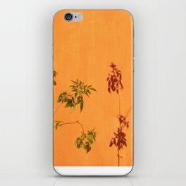 Shadow Plant iPhone Skin