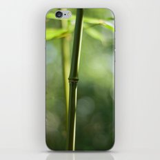Bamboo iPhone & iPod Skin
