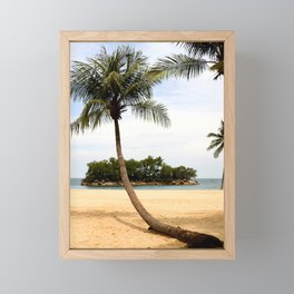 Palm Tree on a Sandy Beach Framed Mini Art Print
