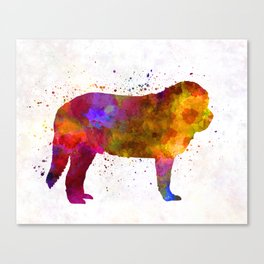 Spanish Mastiff in watercolor Canvas Print