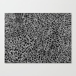Abstract texture mesh net Canvas Print