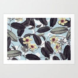 Cold Flowers Art Print