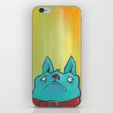 Puggy iPhone & iPod Skin