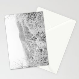 Carolina Winter Stationery Cards