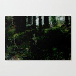 Norwegian Dream I Canvas Print