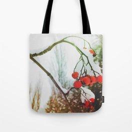 in winter Tote Bag