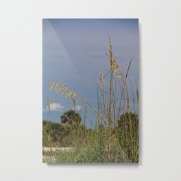 A Voice from Behind Metal Print