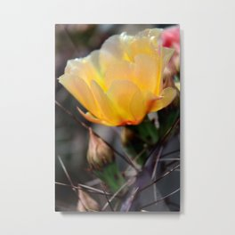 The Pain of Beauty Metal Print