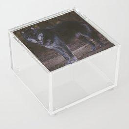 Nadi Acrylic Box