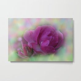 the beauty of a summerday -64- Metal Print