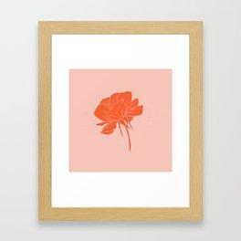 Red-Orange Peony Framed Art Print