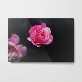 I hate roses Metal Print