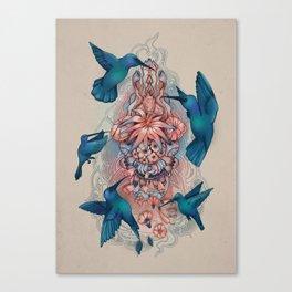kolibri Canvas Print