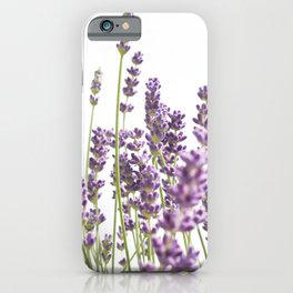 Purple Lavender #3 #decor #art #society6 iPhone Case