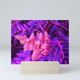 Pink and Blue Sideways Sumac Mini Art Print