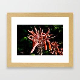 Red Cascade Framed Art Print