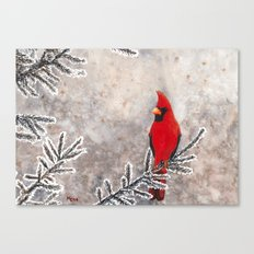 The Red Cardinal in winter Canvas Print