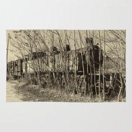 Pochino steam dereliction Rug