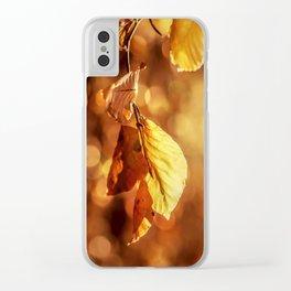 Autumn in Fire Clear iPhone Case