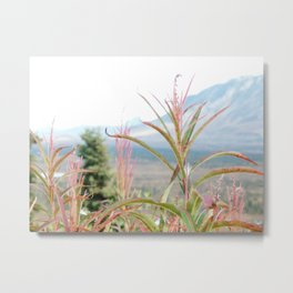 Rise Up | Wildflower Photography Metal Print