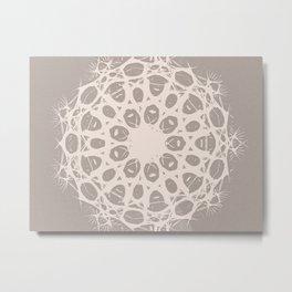 tumbleweed Metal Print