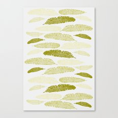 Feathers - Sage Canvas Print