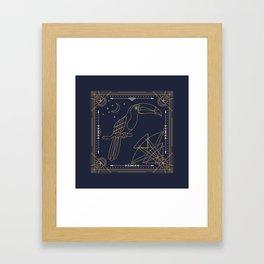 Toucan Gold on Black Framed Art Print