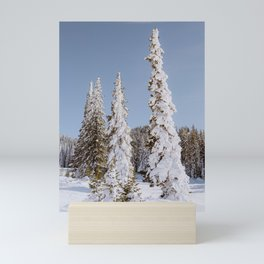 Snow coated trees in Steamboat CO Mini Art Print