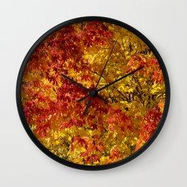 Fall red, yellow muple leaves swinging in a tree in Kirkenes Wall Clock