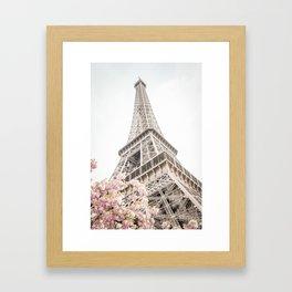 Eiffel Tower Cherry Blossoms Framed Art Print
