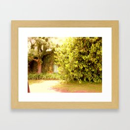 The Garden Door Framed Art Print