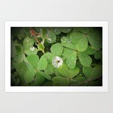 Rain on leaves Art Print